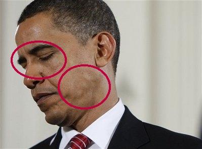 [Image: obama-reptilian.jpg]